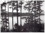 utsikt från fönster1 1959